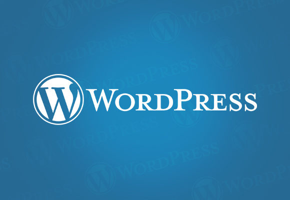 Why You Should Use WordPress A Small Guide For Beginners