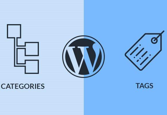 Understanding Categories and Tags in WordPress