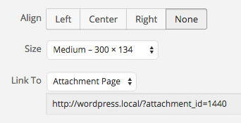finding-out-whether-your-theme-has-an-attachment-page-or-not