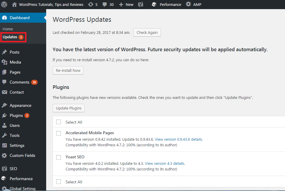 WordPress theme update