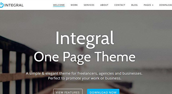 Integral – A Simple, Elegant One-Page Business Theme for WordPress