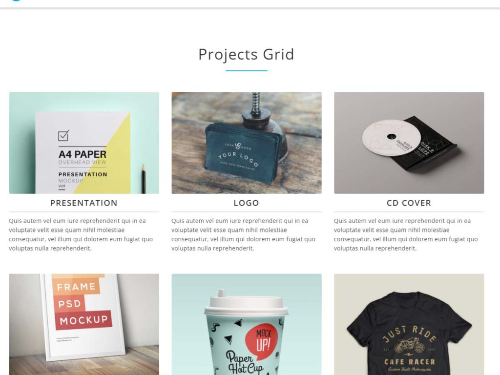 Intergral WordPress theme Portfolio sectio n