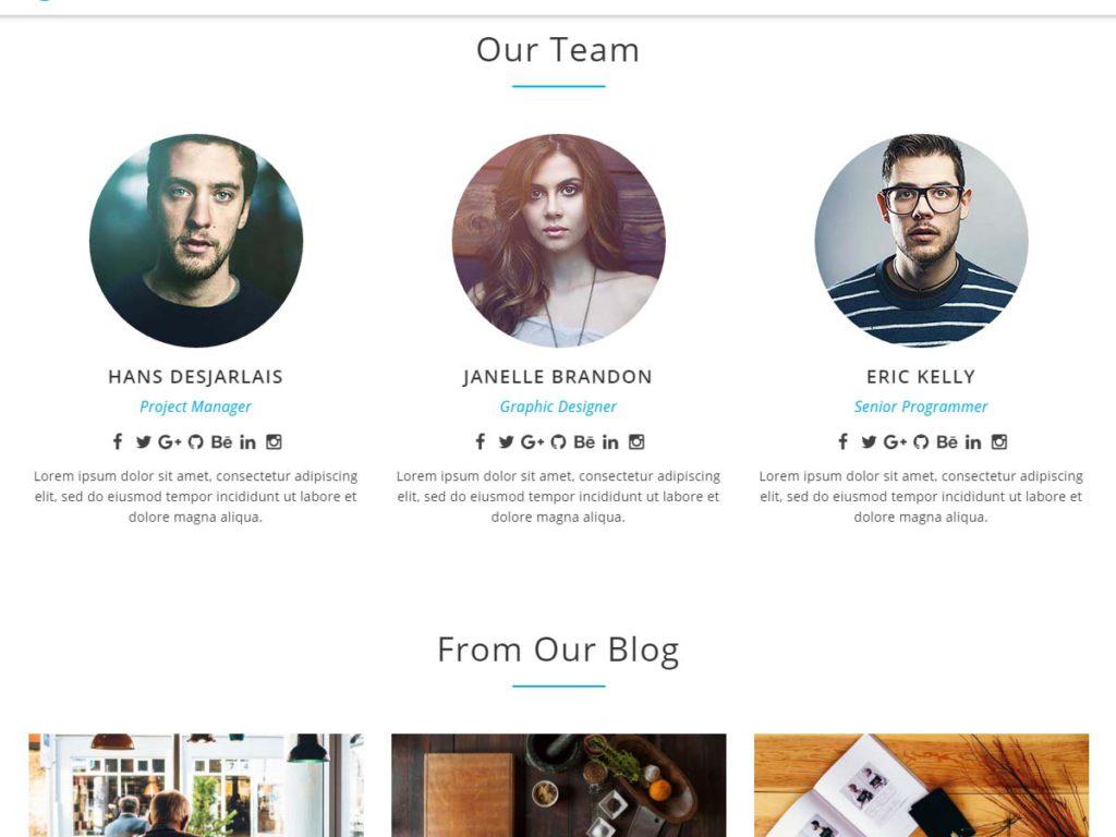 Intergral WordPress theme our team section