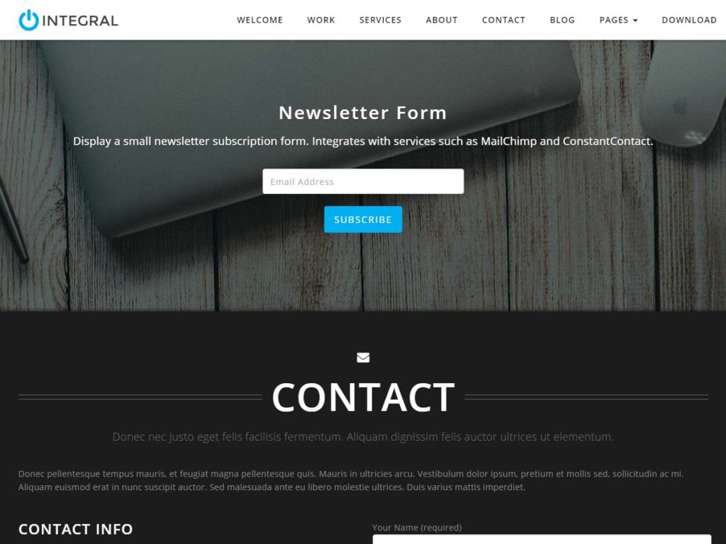 Intergral WordPress theme newsletter section