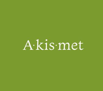 Akismet WordPress Plugin: Importance and Installation Guide