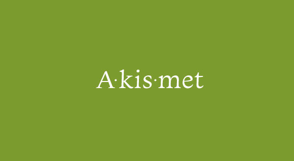 Akismet WordPress Plugin: Importance and Installation Guide