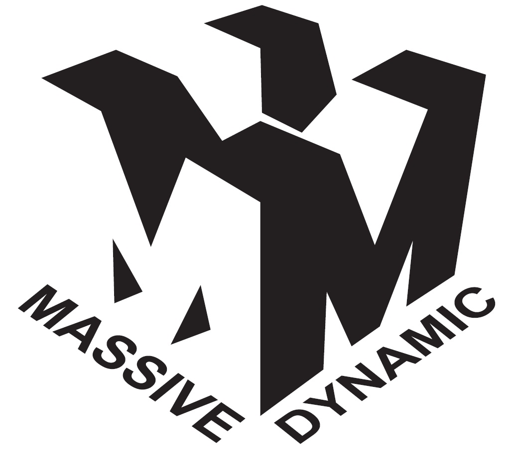 Massive Dynamic business wordpress themes
