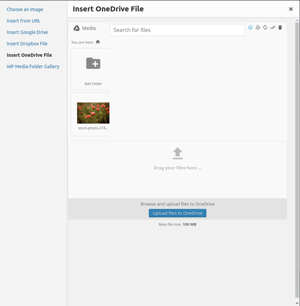 Sync & Import section in WP Media Manager