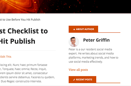 Website Post Author bio