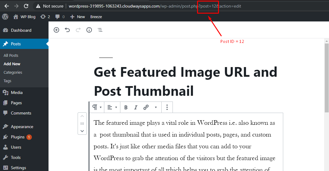 Get Featured Image URL and Post Thumbnail