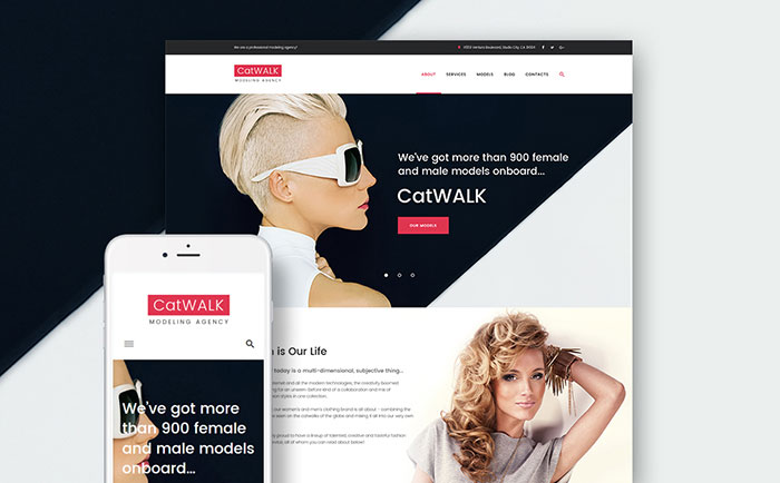 Catwalk - Fashion Style WordPress Theme