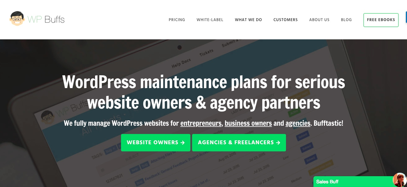 WP Buffs WordPress maintenance support services Provider