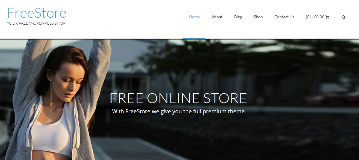FreeStore woo commerce themes