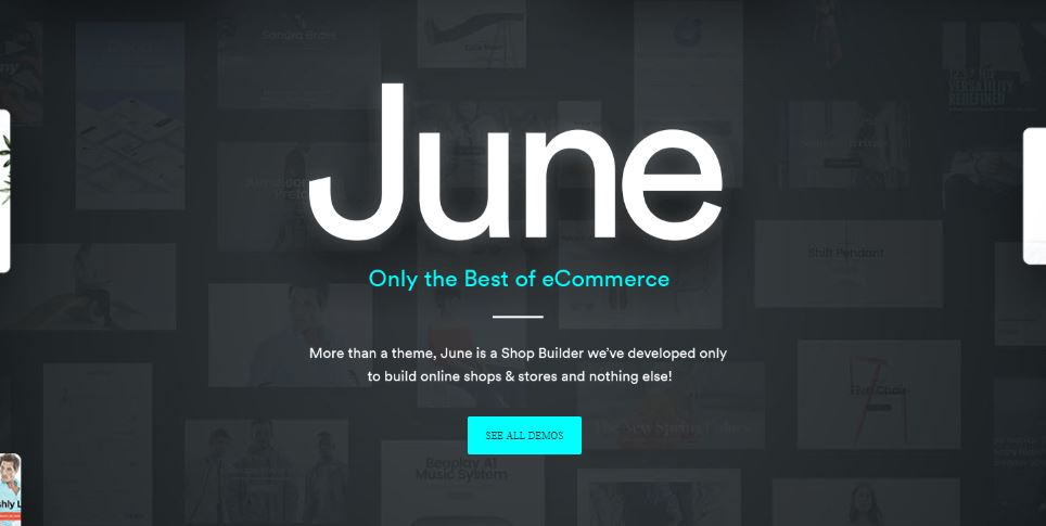 June best minimal wp themes