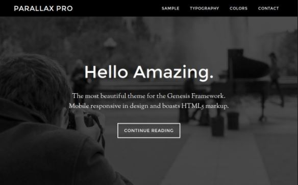 10 Best Genesis Child Themes for Your 2019 WordPress Projects 10