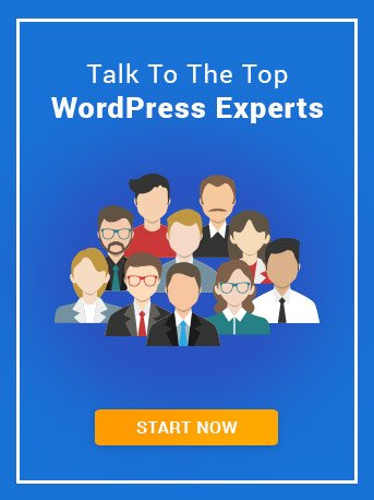 Talk To WordPress Experts
