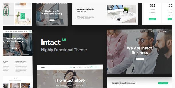 Intact WordPress Theme