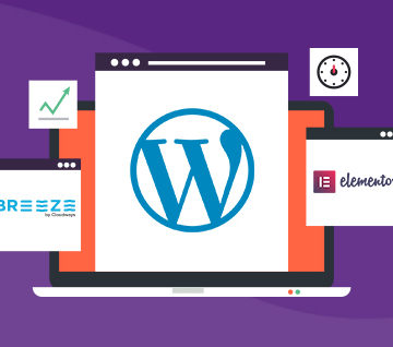 How Elementor and Breeze Add Value to WordPress Websites