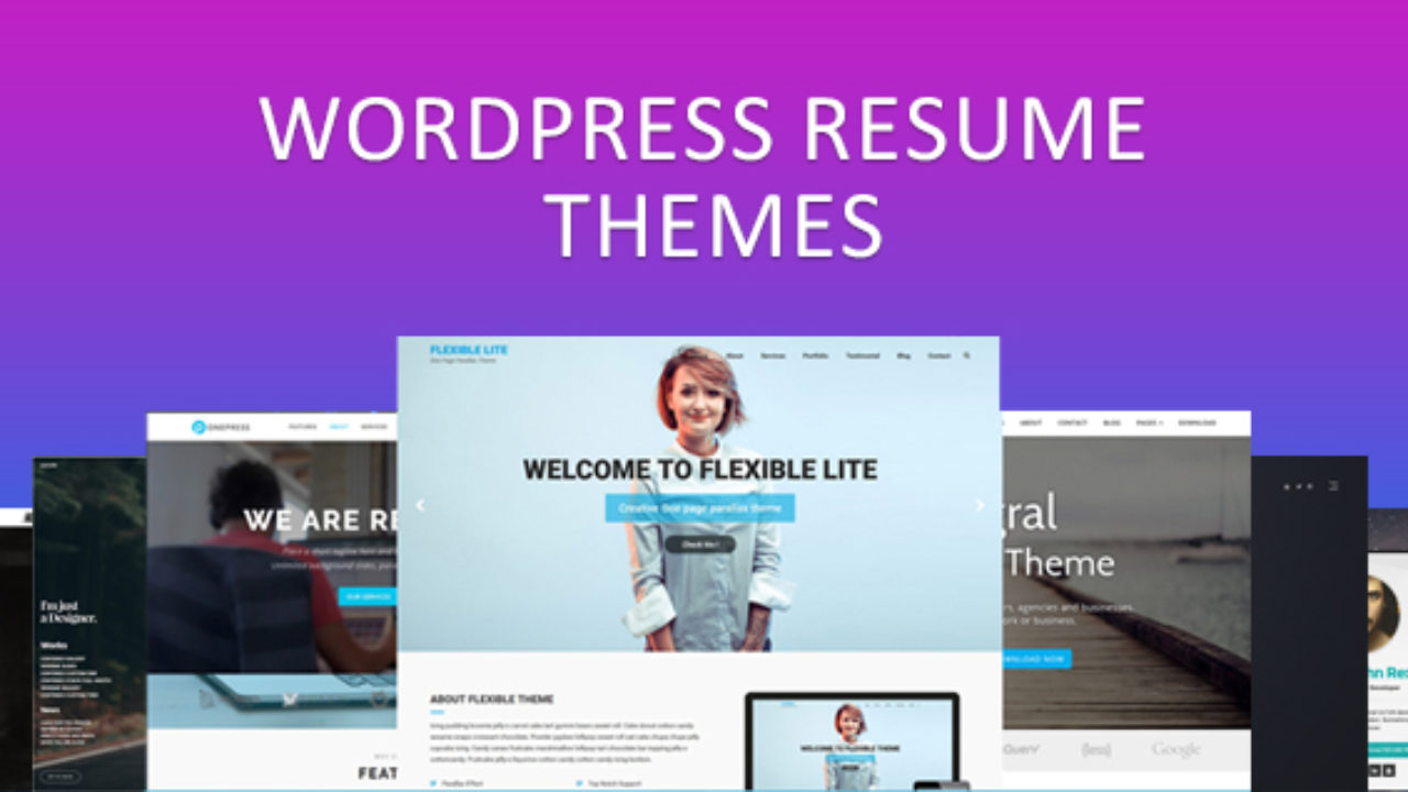 Best Wordpress Resume Themes Personal Website Templates In 2020