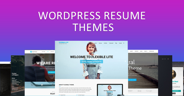 10 Best WordPress Resume Themes of 2018 To Create Amazing Resume