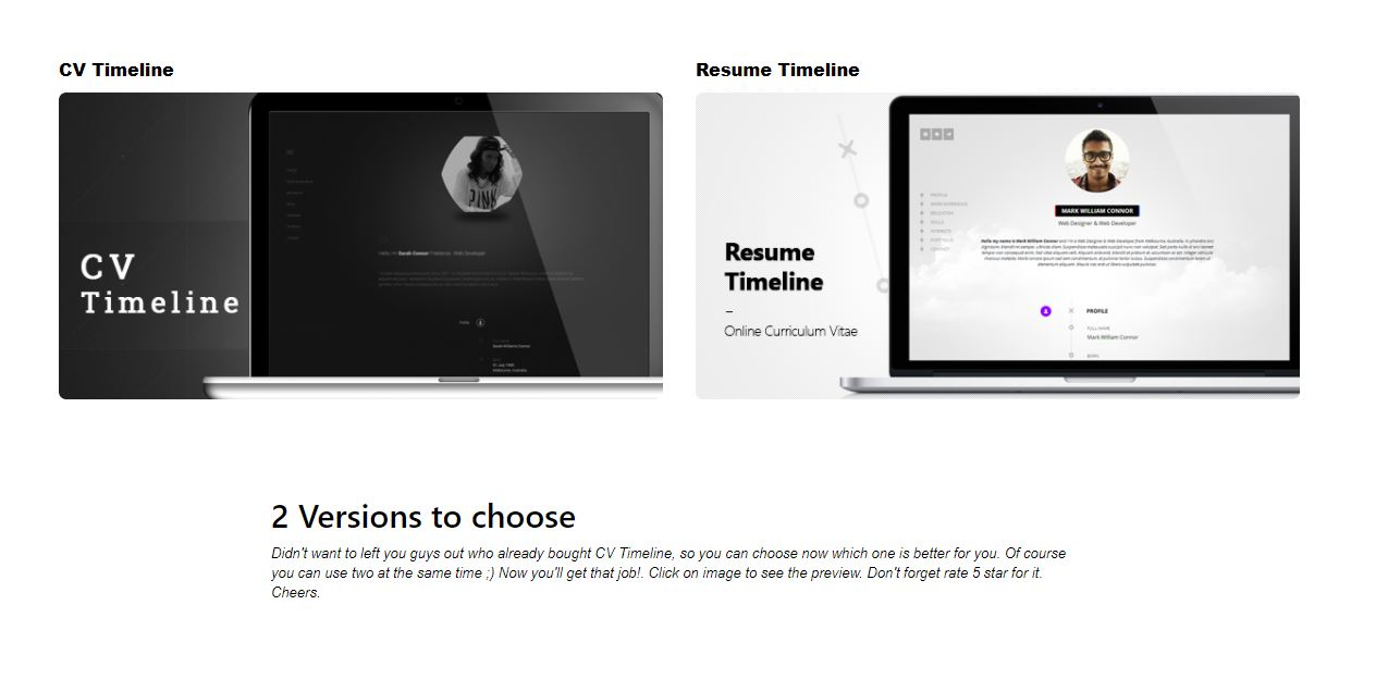 CV Timeline wp resume theme