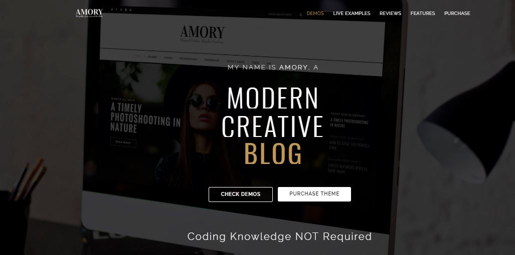 Amory wordpress themes for fashion blogs