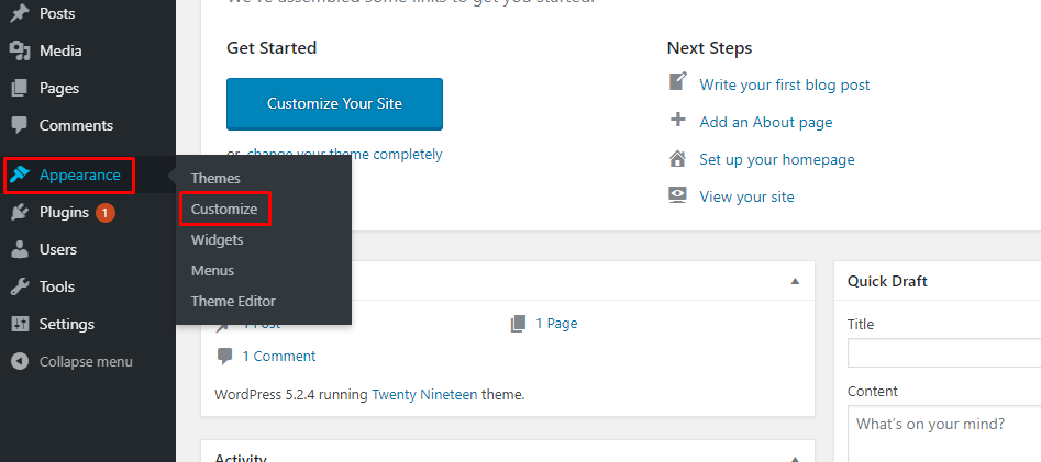 theme Appearance Customize section in wordpress