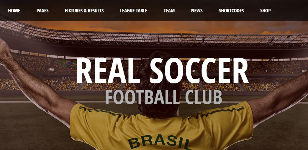 WordPress Sports Themes – Get Best Themes for Your Sports Website