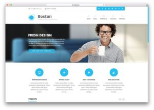 Bostan WordPress theme for business