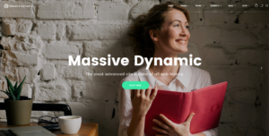 Massive Dynamic business WordPRess theme