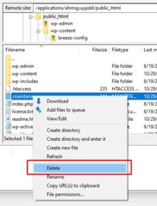 Delete maintenance file
